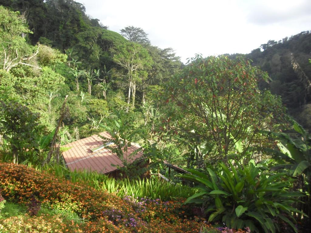 La Bastilla Ecolodge cloud forest of Nicaragua