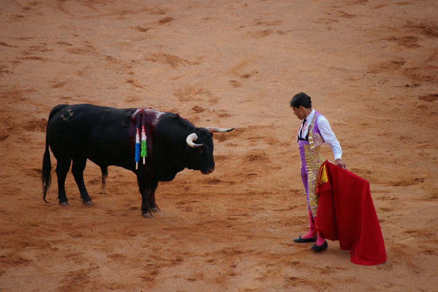 going to a bullfight