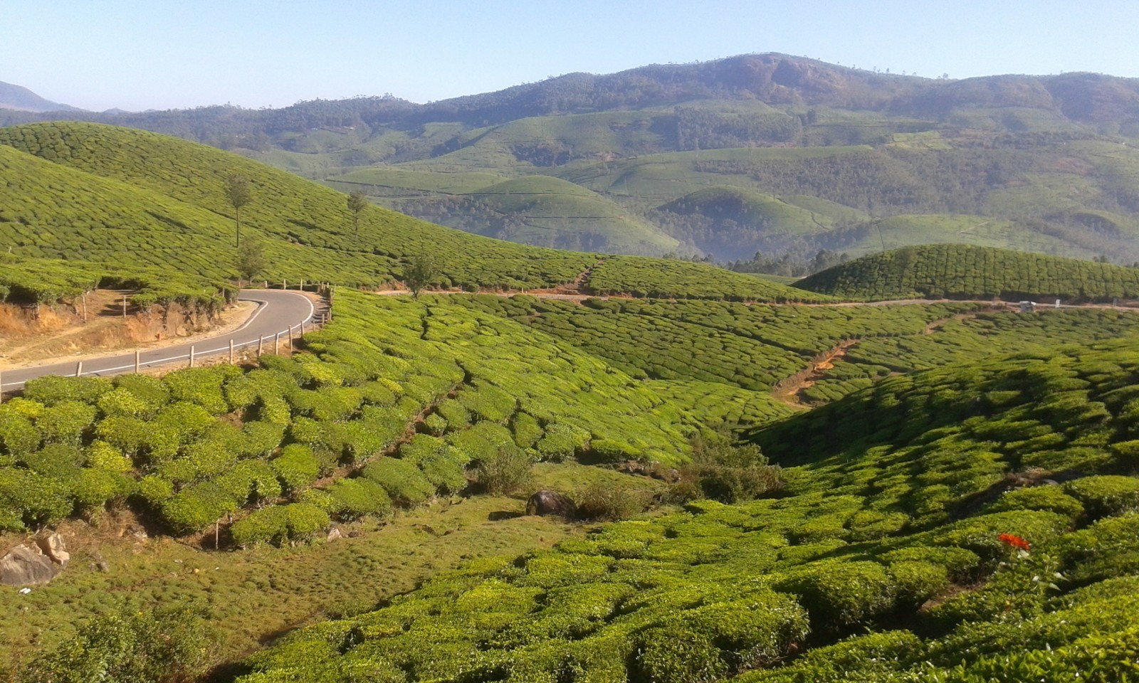 Kerala is different Munnar