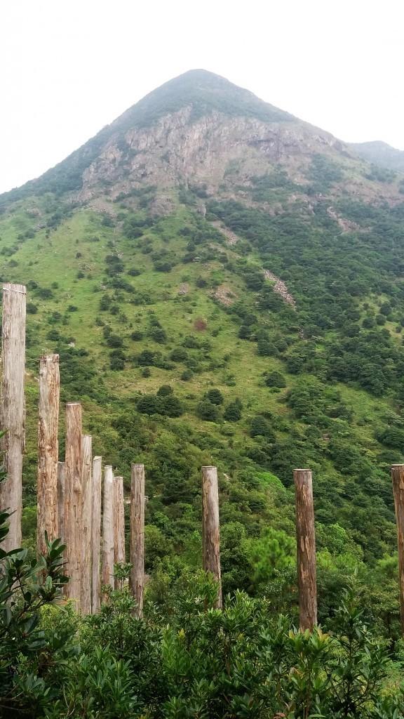 best hikes in Hong Kong Lantau Peak