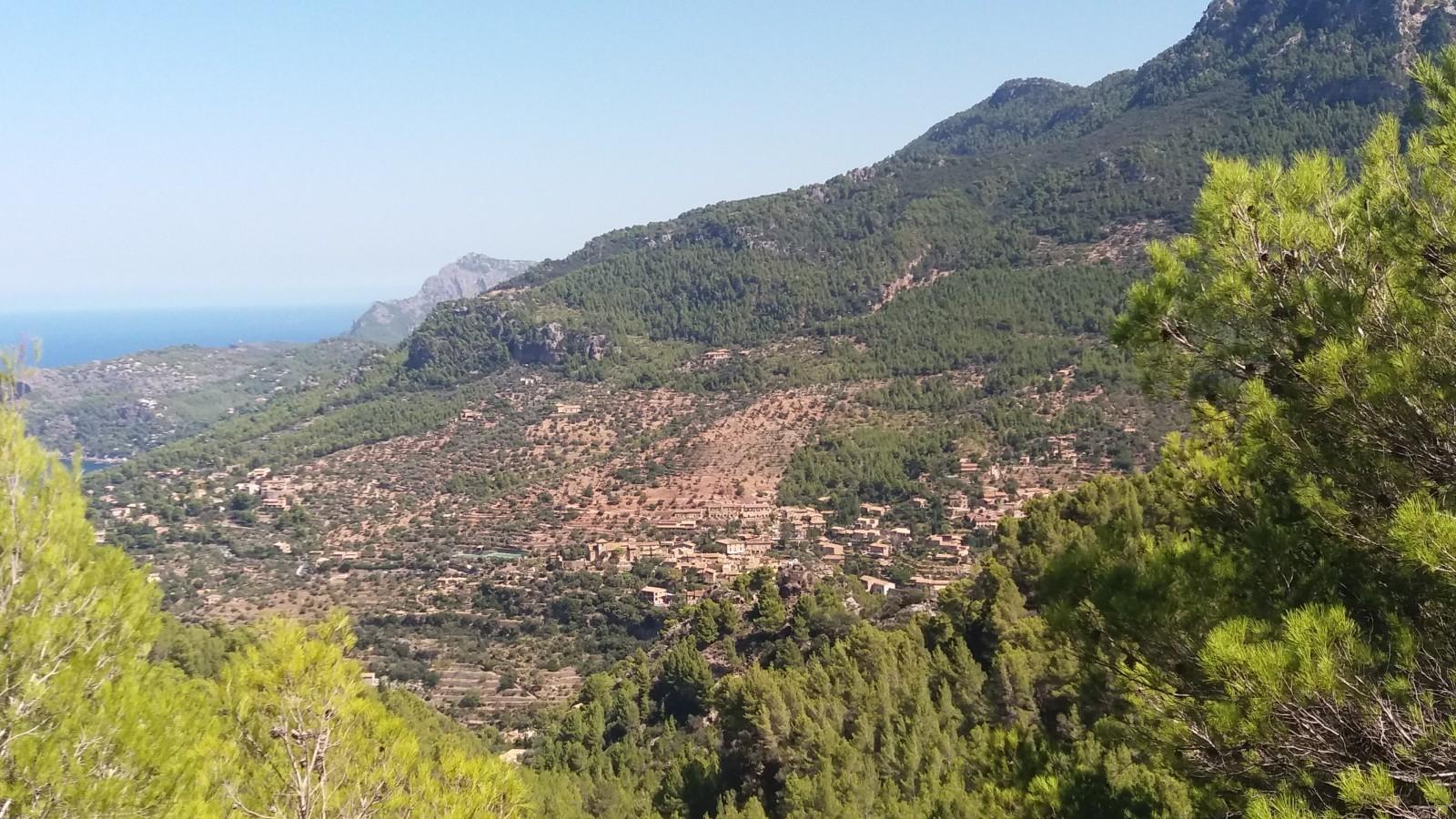 things to do in Palma de Mallorca