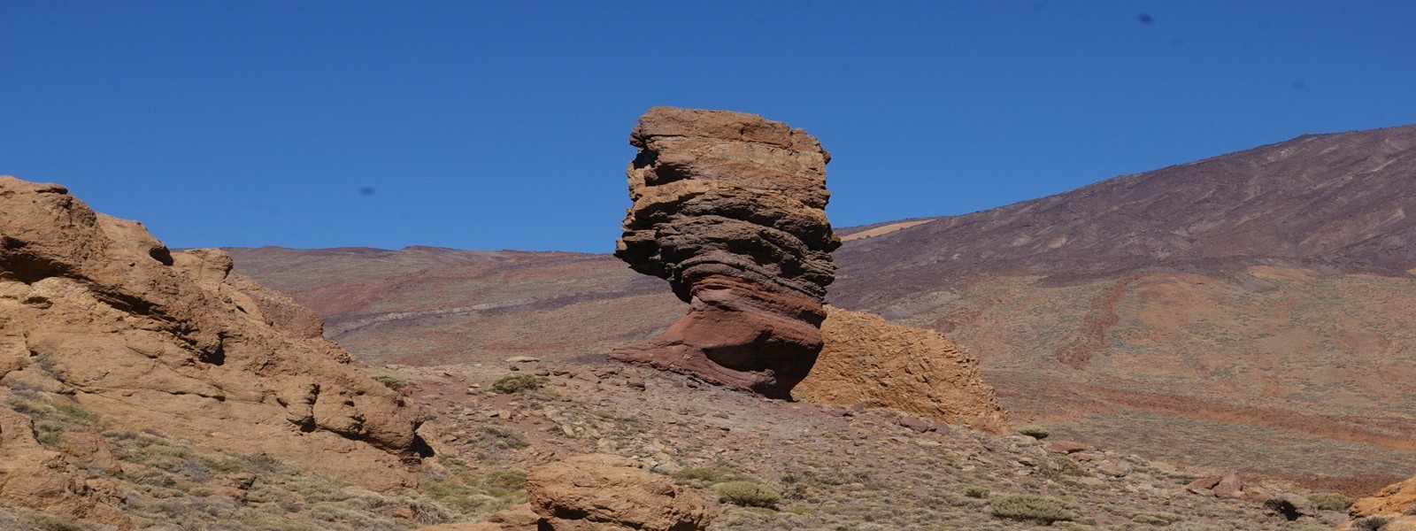 Tenerife: from mountain ranges to pilot whales and colonial towns!