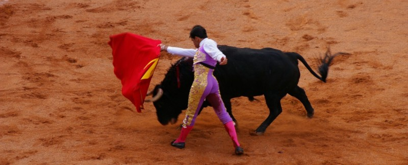 what happens at a bullfight