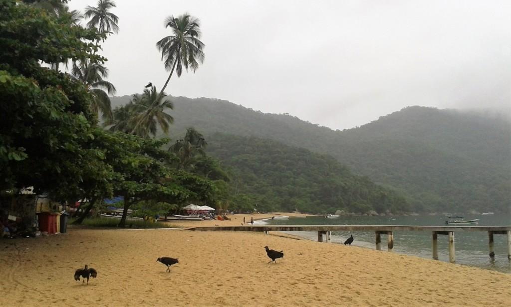 Praia de Palmas Ilha Grande