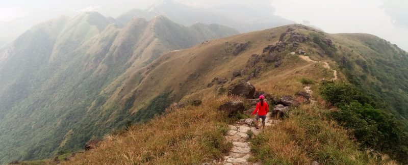 easy hiking trails in hong kong