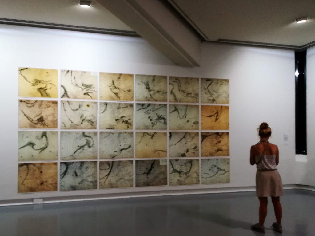 Musee d'art moderne et contemporain Nice