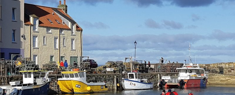 things to do in Fife St Andrews harbour
